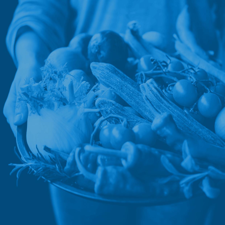 Gemüsekorb in blau