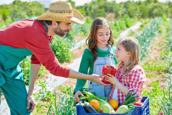 Bauer und Kinder mit Gemüsekiste